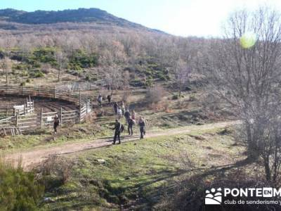 Senderismo Hayedo de Montejo (Senderismo Madrid-Senderismo Guadalajara-Senderismo Segovia); senderis